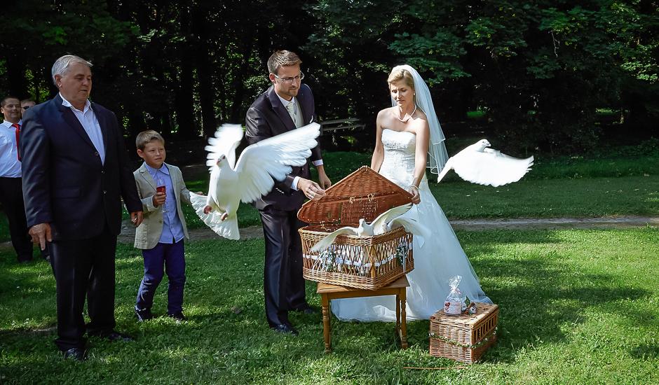 Foto Standesamtliche Trauung Hochzeitsbilder Beim Sektempfang Und